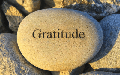 Gratitude makes a difference – Weekly news for Friday 19 July